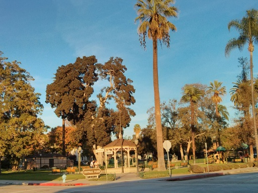 Uptown Park